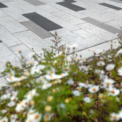 Avenida, Excelent antracit, bílá, přírodní